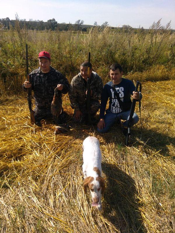 Охота на фазана в Подмосковье фото №558
