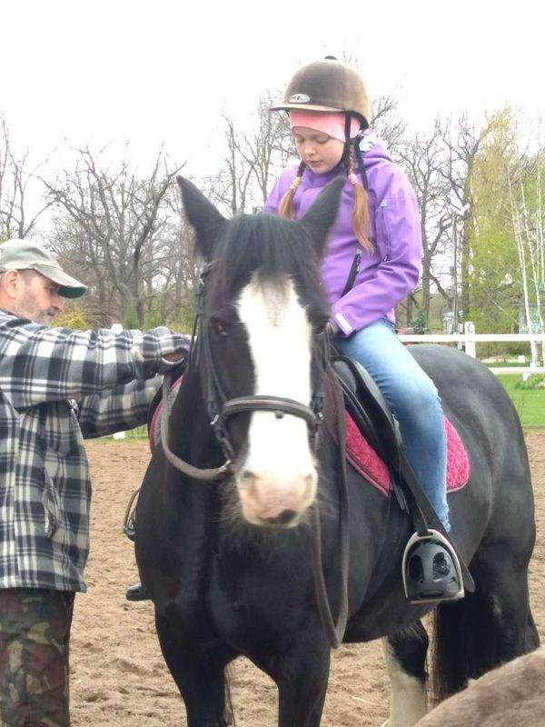 Прогулки на лошадях фото №1