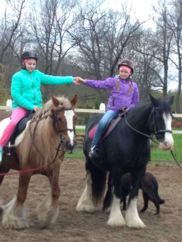 Прогулки на лошадях фото №2