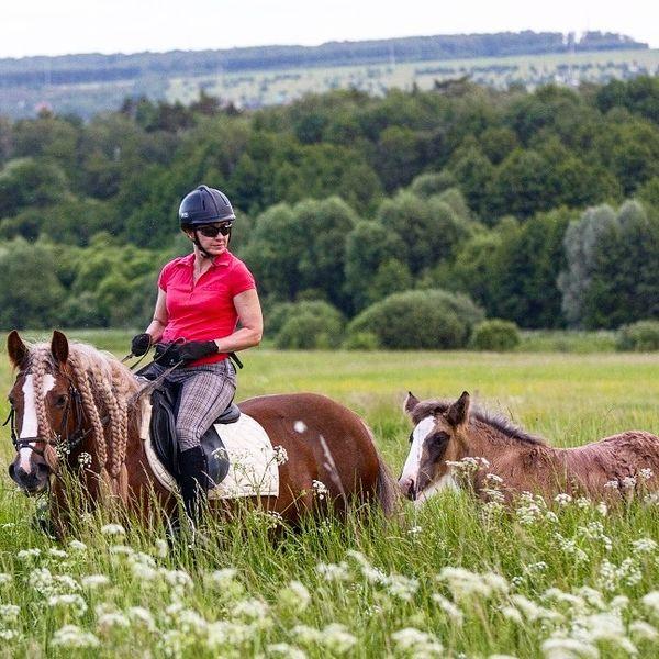 Прогулки на лошадях фото №22