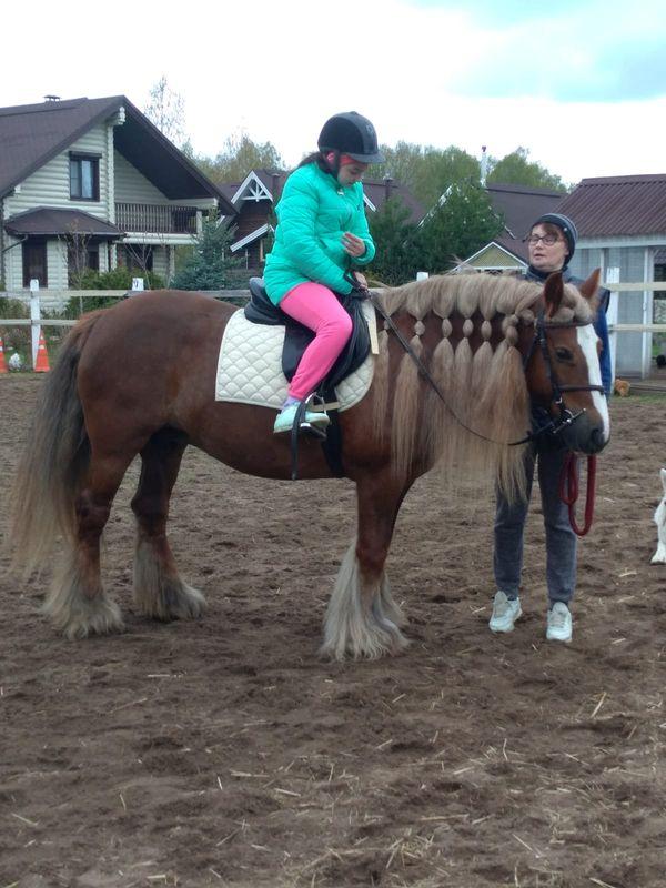 Прогулки на лошадях фото №26