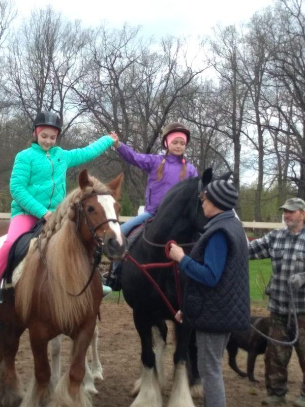 Прогулки на лошадях фото №28