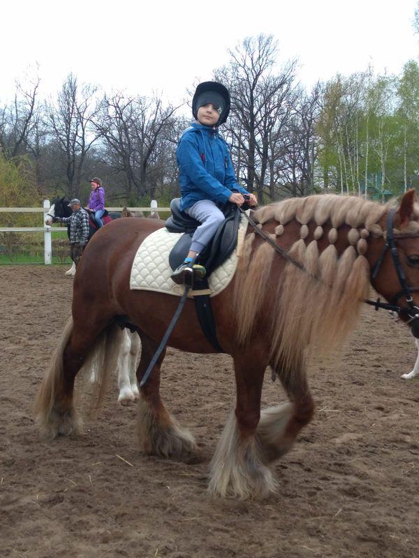 Прогулки на лошадях фото №30