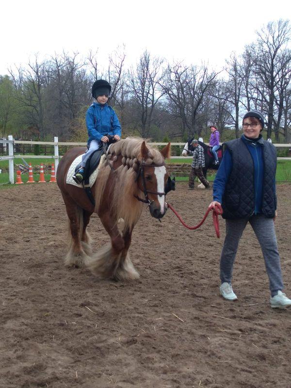 Прогулки на лошадях фото №31
