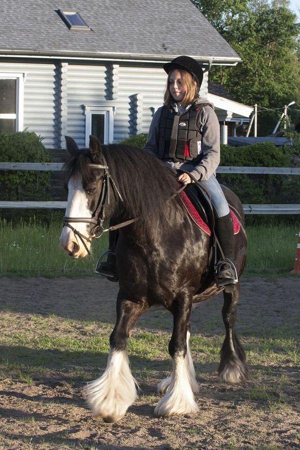 Прогулки на лошадях фото №37
