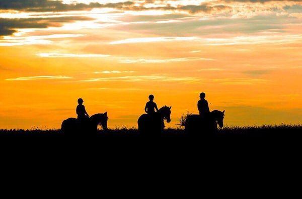 Прогулки на лошадях фото №39