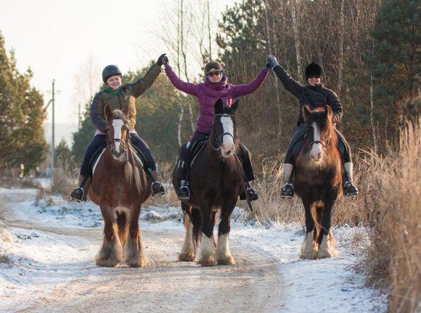 Прогулки на лошадях фото №42