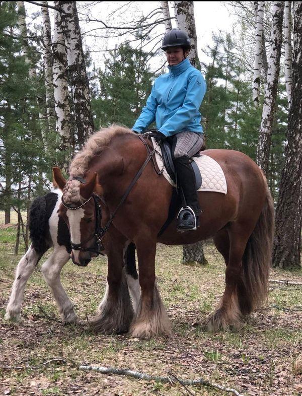 Прогулки на лошадях фото №45