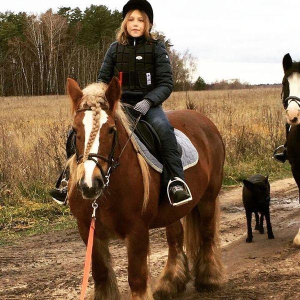 Прогулки на лошадях фото №9